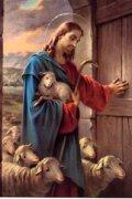 ボネラポストカード よい牧者イエス (5枚組)
