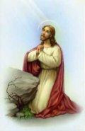 ゲッセマネのイエスの御絵 (10枚セット) ※返品不可商品
