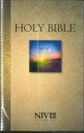 英語 聖書 NIV(F) 2011(4050)