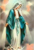 ボネラポストカード 無原罪の聖母(5枚組) ※返品不可商品