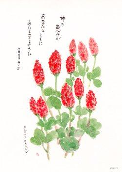 画像1: 花と祈りポストカード ストロベリキャンドル(5枚組)