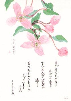 画像1: 花と祈りポストカード モンタナエリザベス(5枚組)