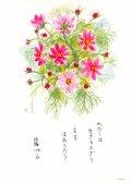 花と祈りポストカード コスモス (5枚組)