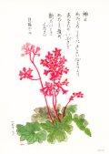 花と祈りポストカード ツボサンゴ(5枚組)