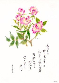 画像1: 花と祈りポストカード わたしは世の光(5枚組)